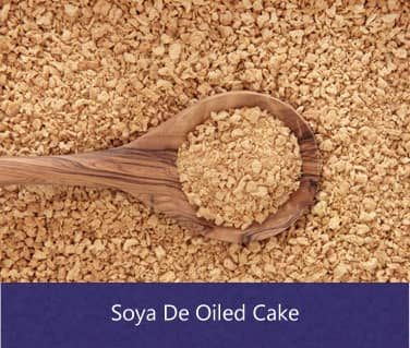 soya de oiled cake suppliers in india